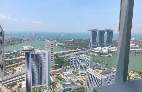Singapore Luxury Condo for Sale | James Lim